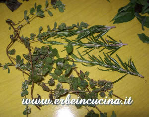 Rosemary and marjoram