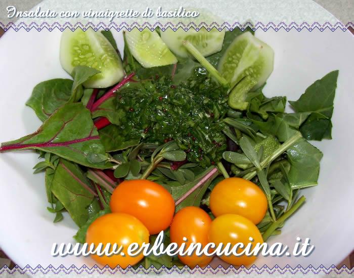 Erbe in cucina ricetta insalata con vinaigrette di basilico for Insalata da taglio