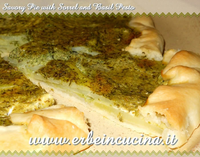 Savory pie with sorrel and basil pesto