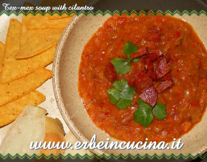 Tex-mex soup with cilantro