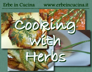 Cooking with aromatic herbs
