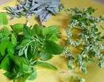 Summer recipes with herbs and spices