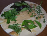 Spring recipes with herbs and spices