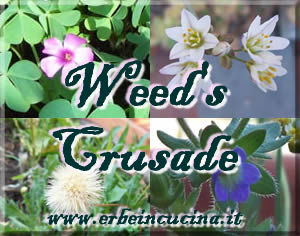 Weeds Crusade